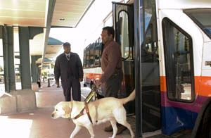 TRO2_NJ_TRANSIT_Access_2